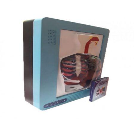 DJT - Maket Elektrik Pernapasan Manusia