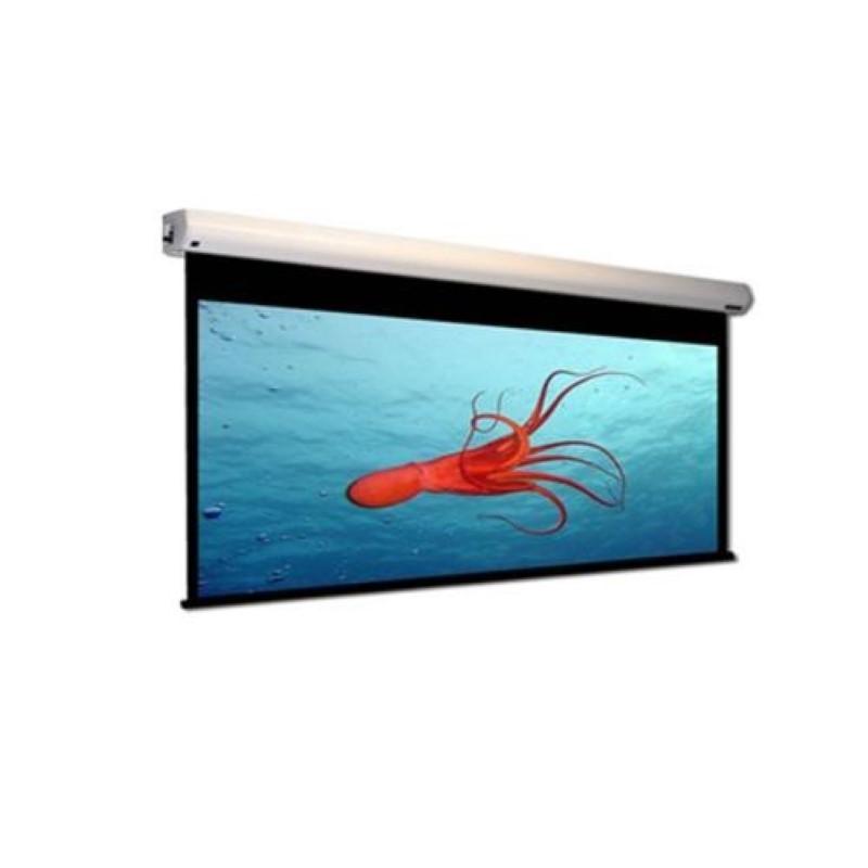 MICROVISION - Motorized Screen 244x244 cm / 96inchx96inch  [EWSMV2424RL]